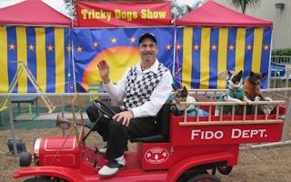 ticky-dogs-show